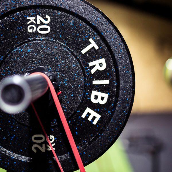TRIBE Active - 20KG Bumper